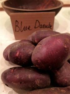 blue-danube-tastefest