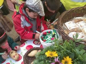 spuds-harvest-festival-dublin